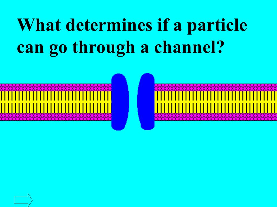 What determines if a particle can go through a channel