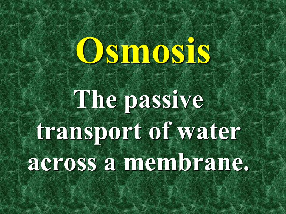 The passive transport of water across a membrane.