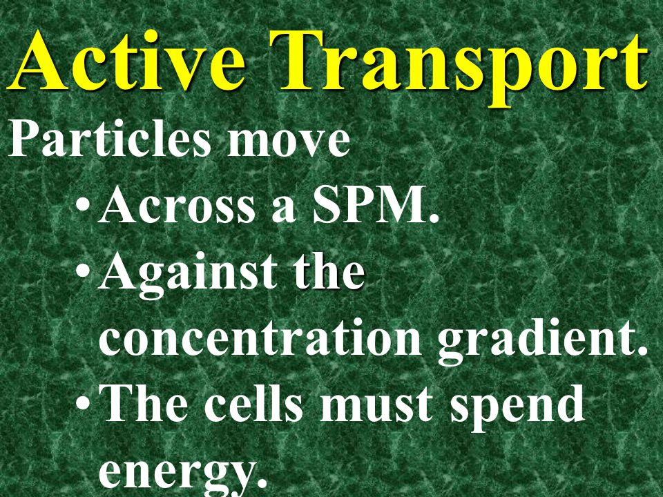 Active Transport Particles move Across a SPM.