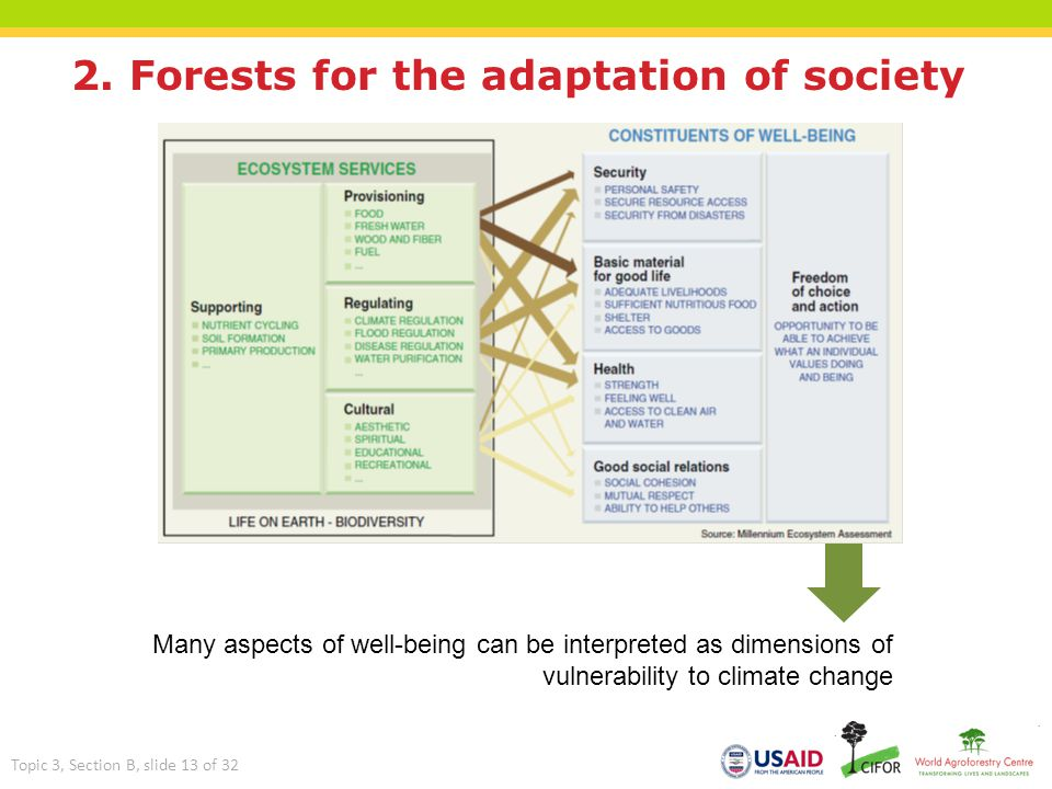 2. Forests for the adaptation of society