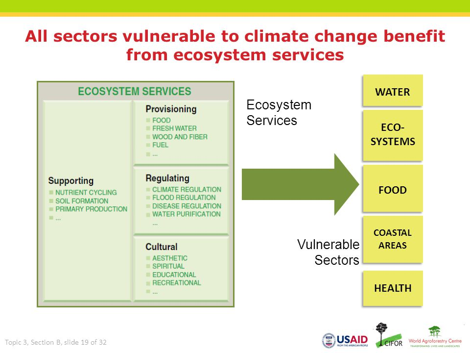 All sectors vulnerable to climate change benefit from ecosystem services