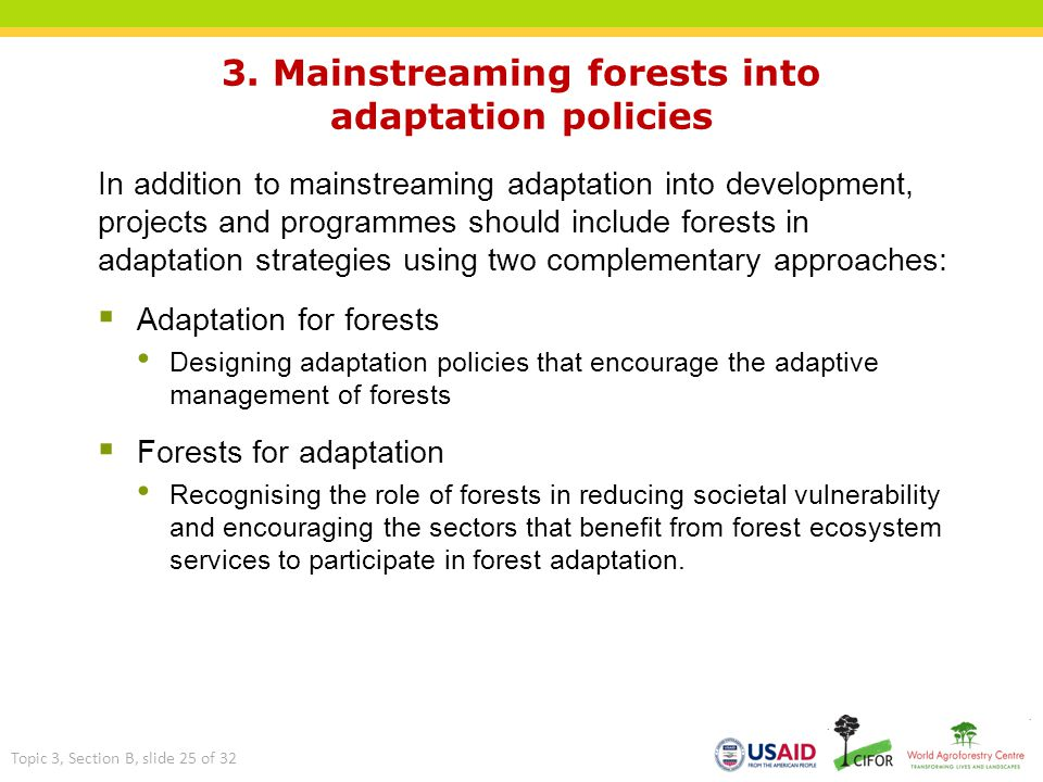 3. Mainstreaming forests into adaptation policies