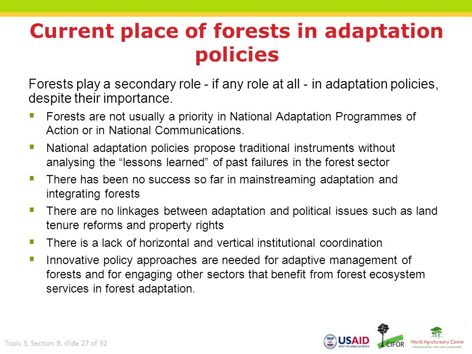 Current place of forests in adaptation policies