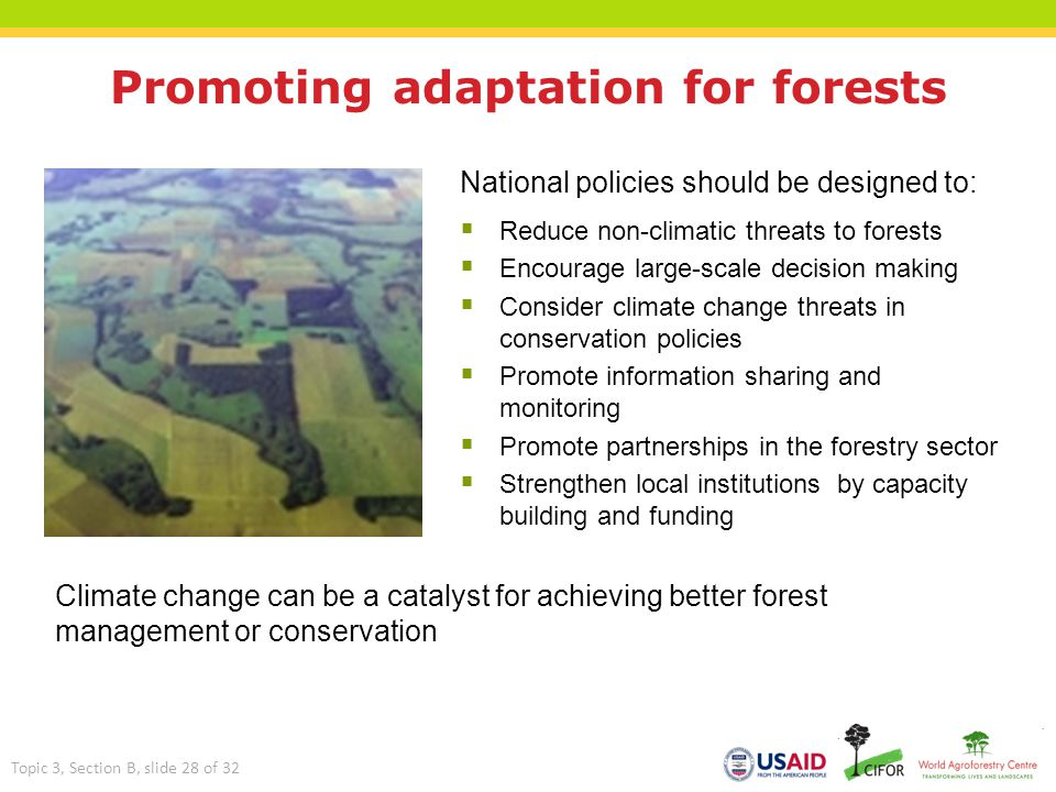 Promoting adaptation for forests
