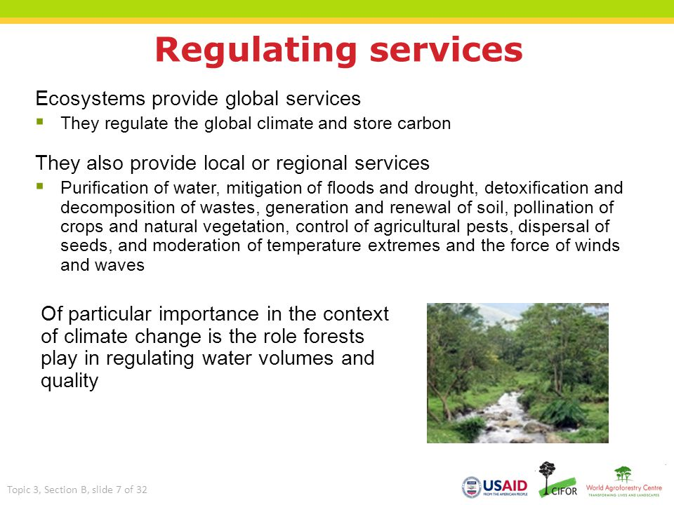 Regulating services Ecosystems provide global services