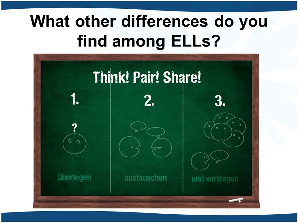 What other differences do you find among ELLs