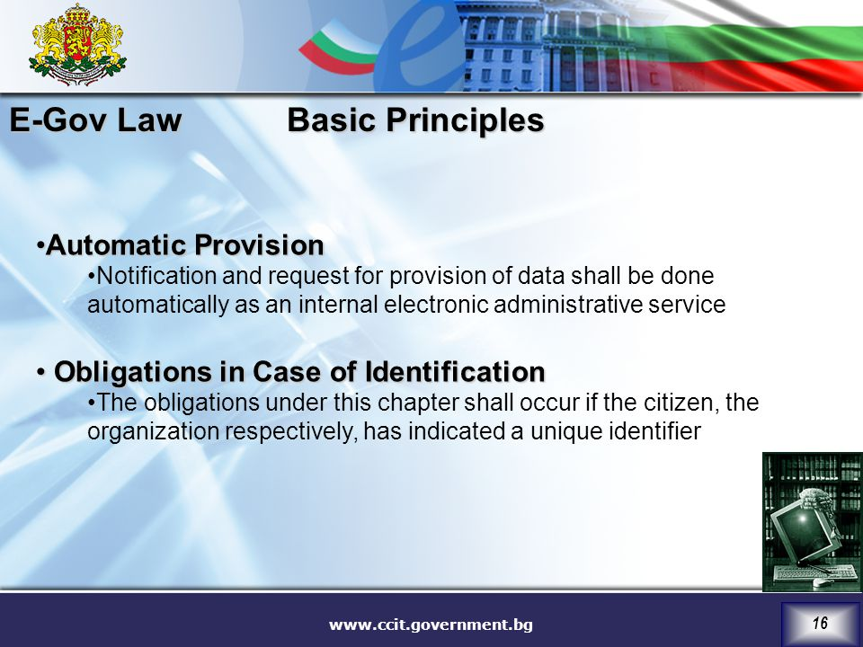 E-Gov Law Basic Principles Automatic Provision