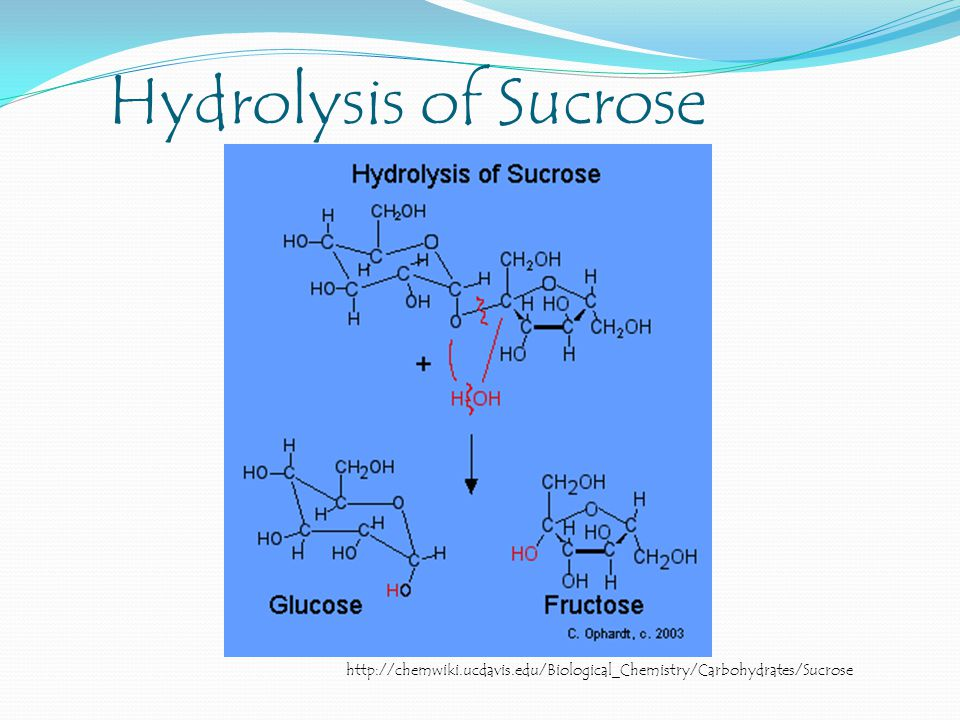 Hydrolysis of Sucrose http://chemwiki.ucdavis.edu/Biological_Chemistry/Carbohydrates/Sucrose