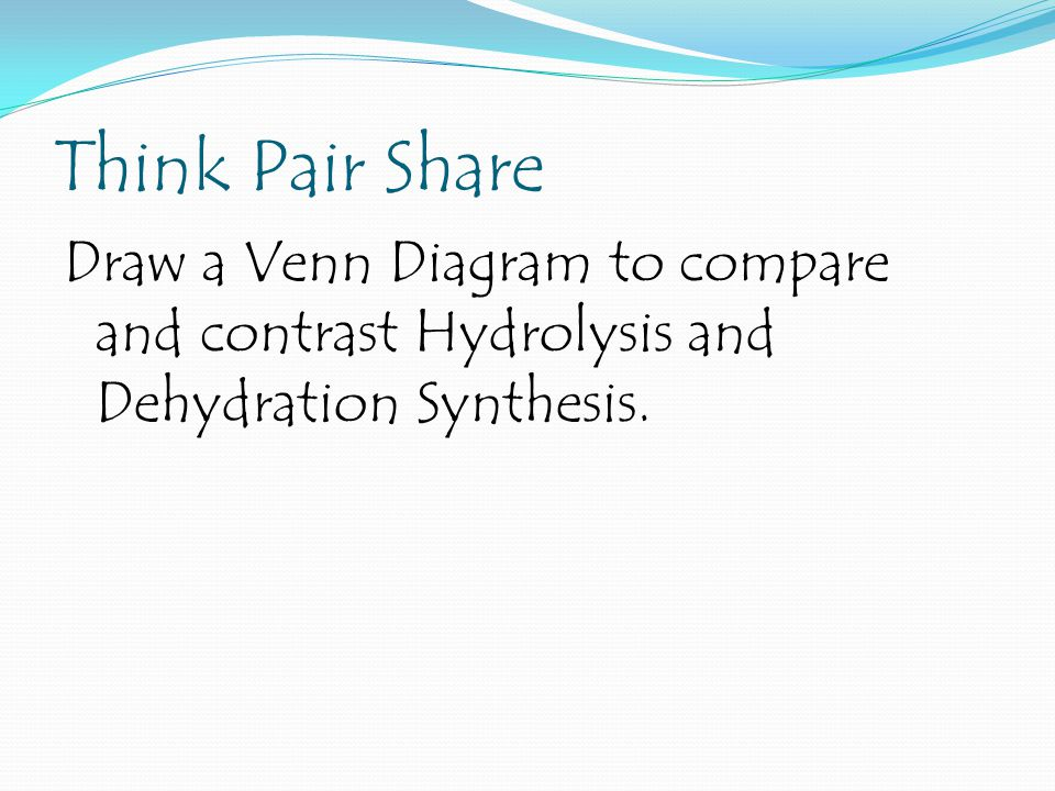 Think Pair Share Draw a Venn Diagram to compare and contrast Hydrolysis and Dehydration Synthesis.