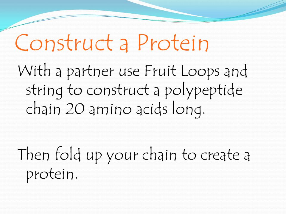 Construct a Protein
