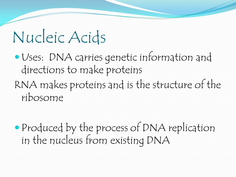 Nucleic Acids Uses: DNA carries genetic information and directions to make proteins. RNA makes proteins and is the structure of the ribosome.