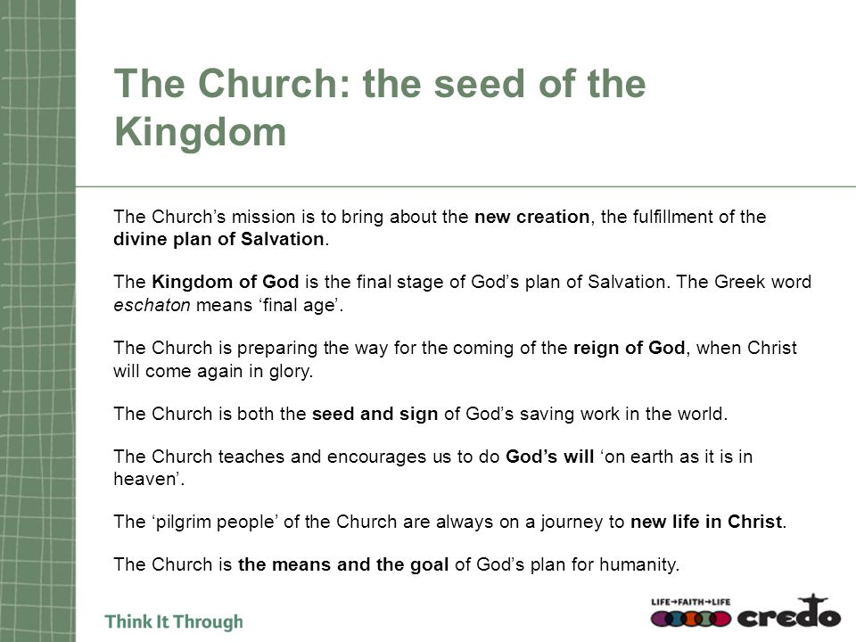 The Church: the seed of the Kingdom