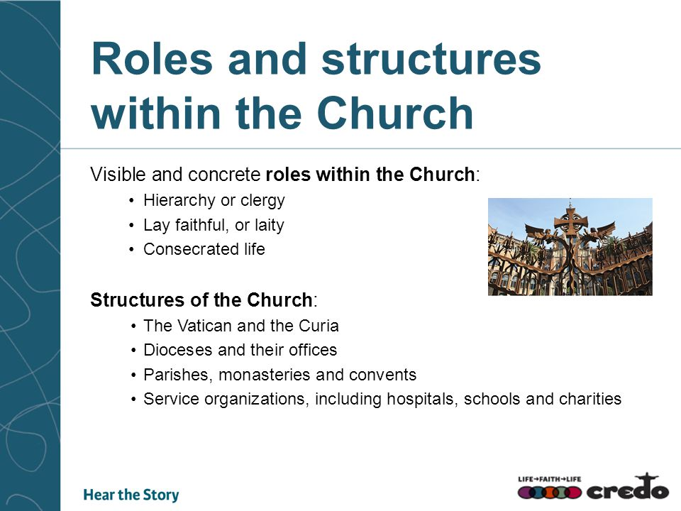 Roles and structures within the Church