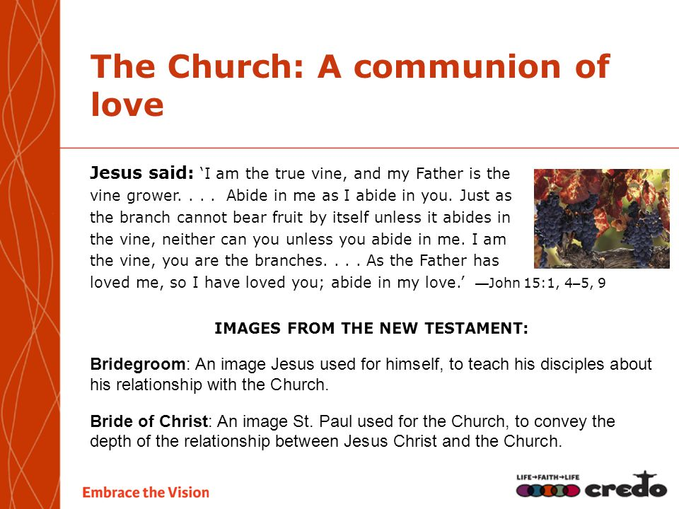The Church: A communion of love