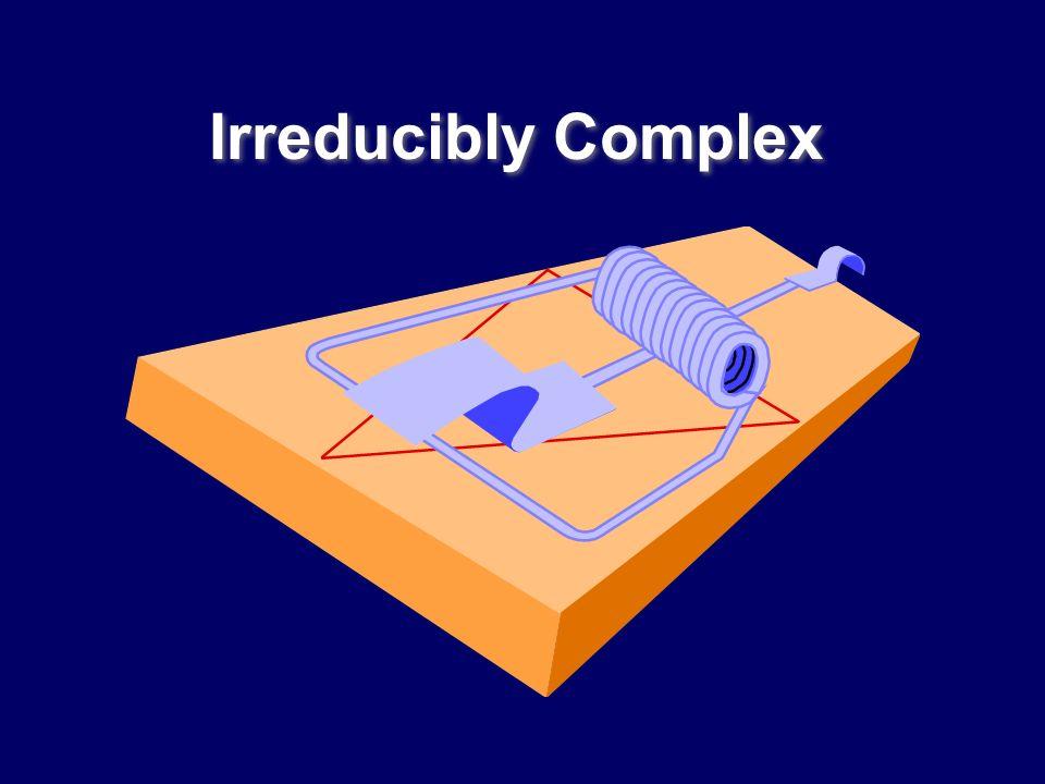 Irreducibly Complex