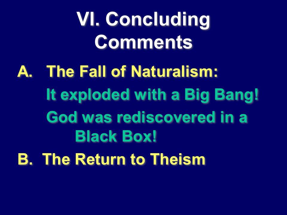 VI. Concluding Comments