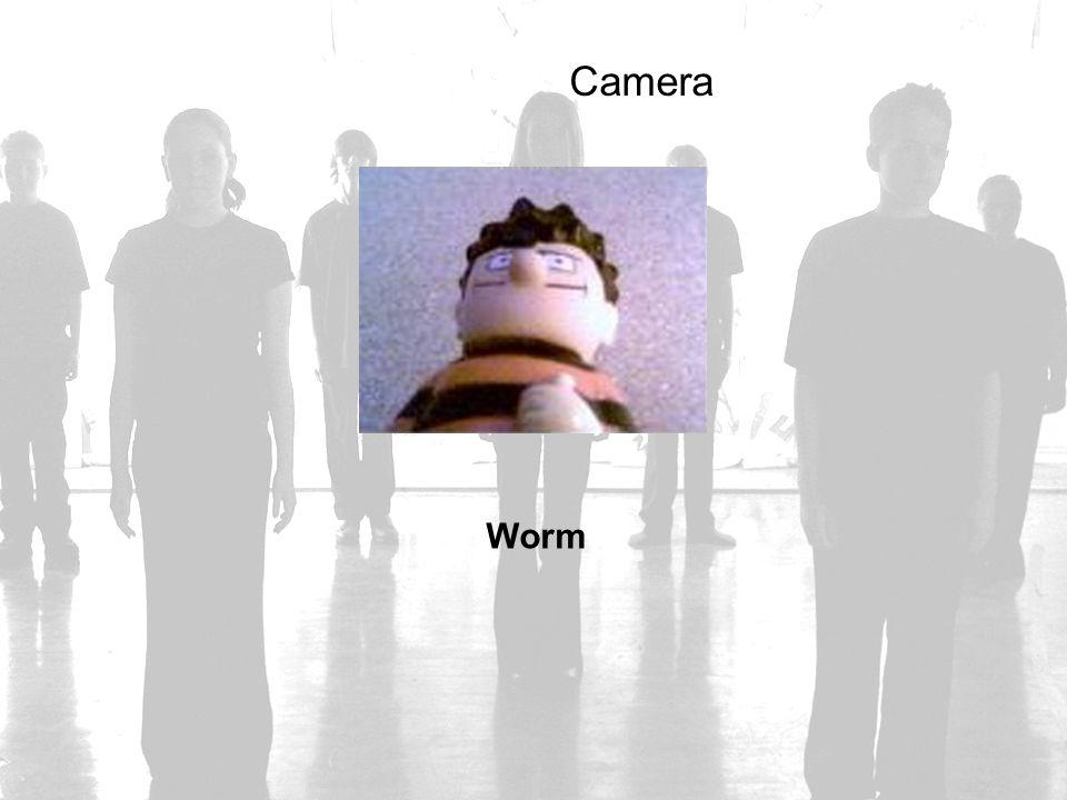 Camera Worm