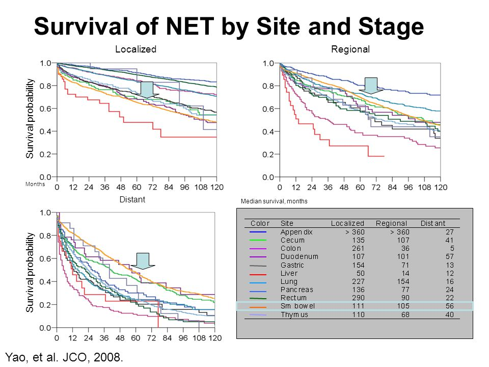 Survival of NET by Site and Stage