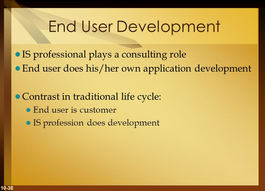 End User Development IS professional plays a consulting role