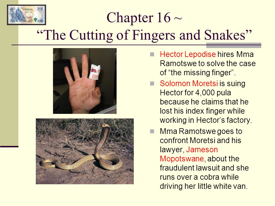 Chapter 16 ~ The Cutting of Fingers and Snakes