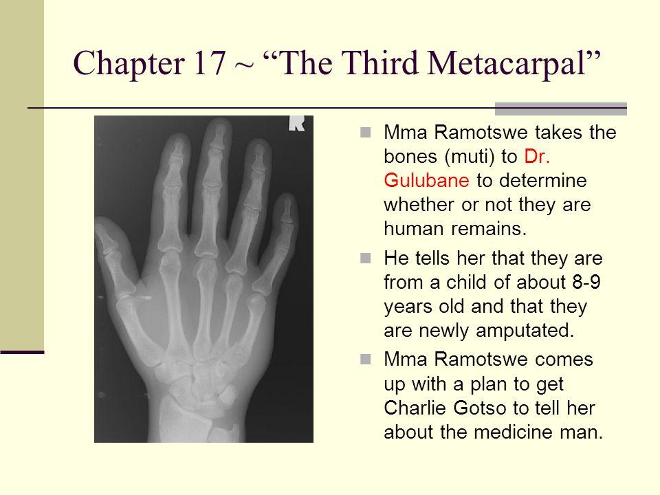 Chapter 17 ~ The Third Metacarpal