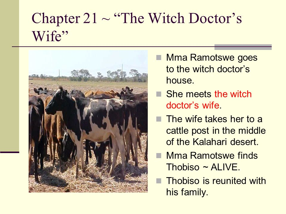 Chapter 21 ~ The Witch Doctor's Wife
