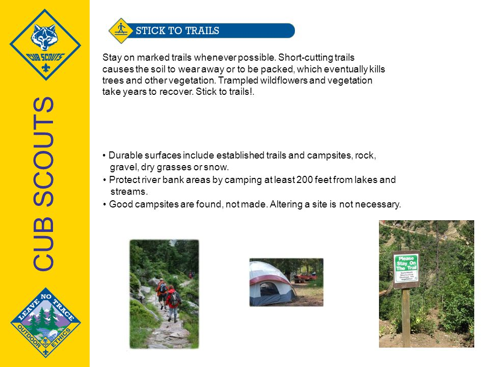 Training for cub scouts ppt video online download for Cub scout powerpoint template