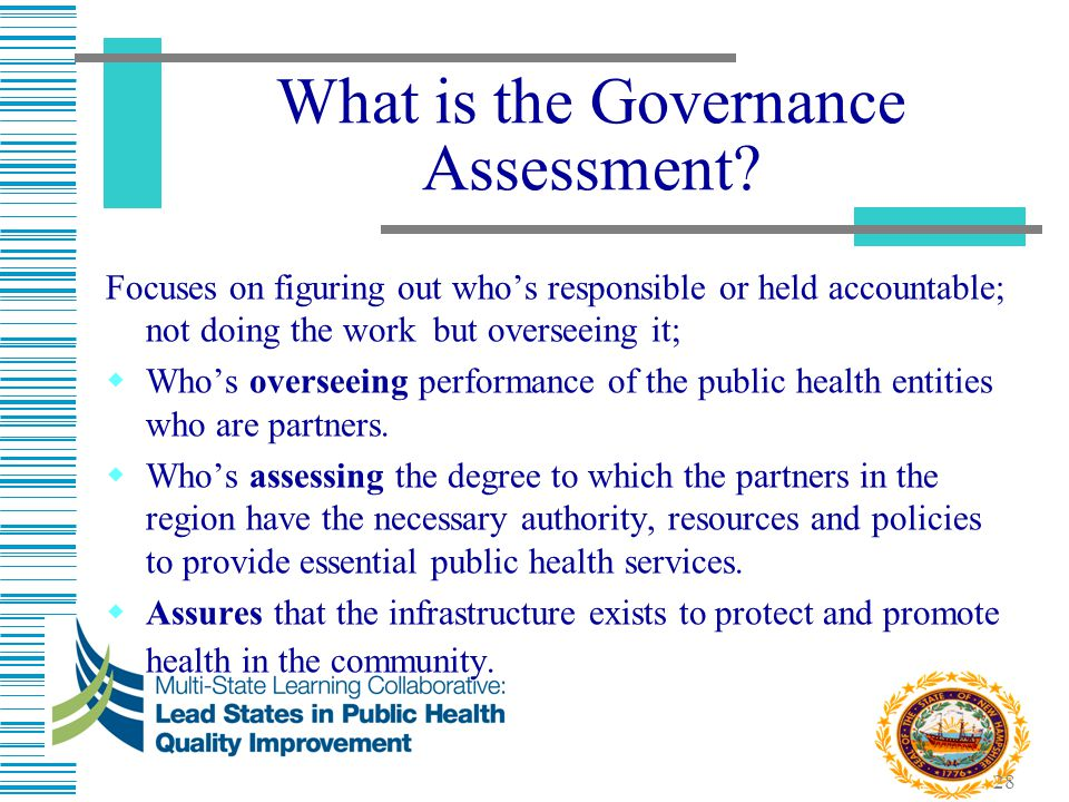 What is the Governance Assessment