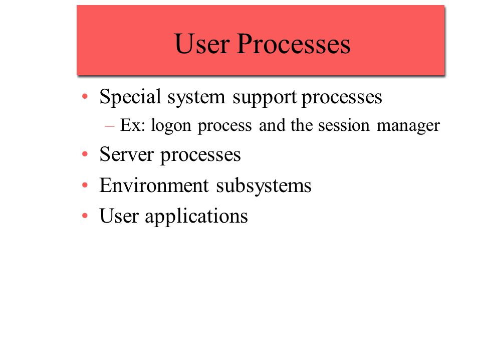 User Processes Special system support processes Server processes