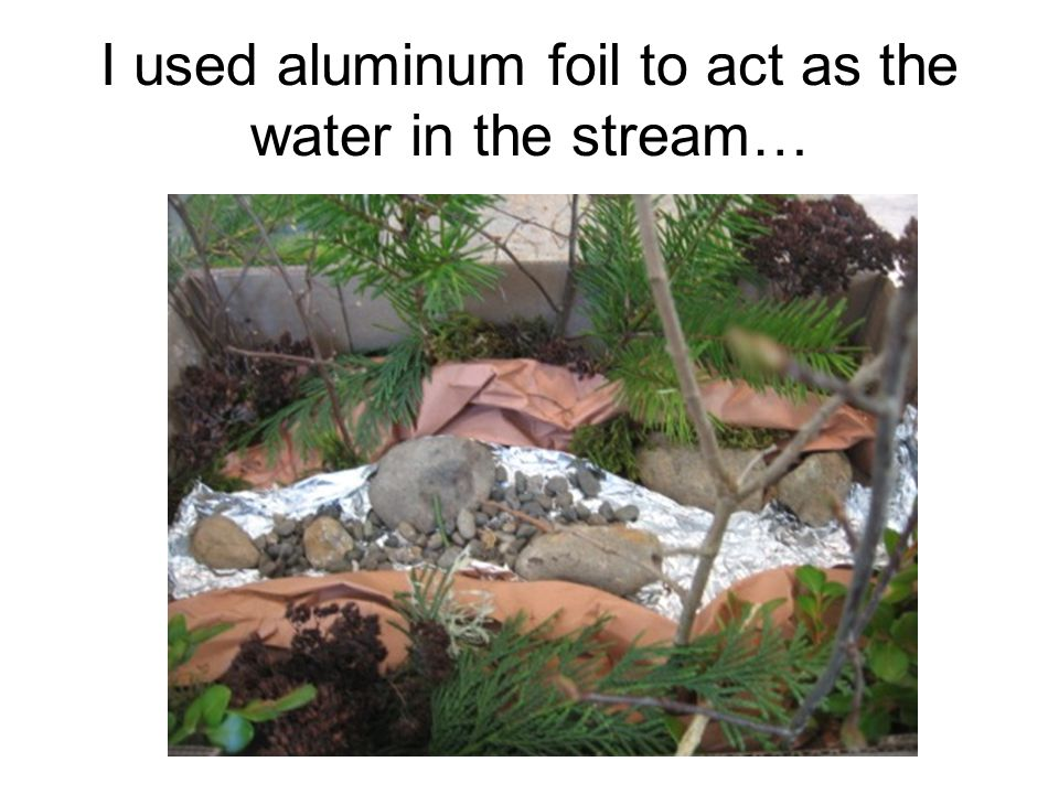 I used aluminum foil to act as the water in the stream…