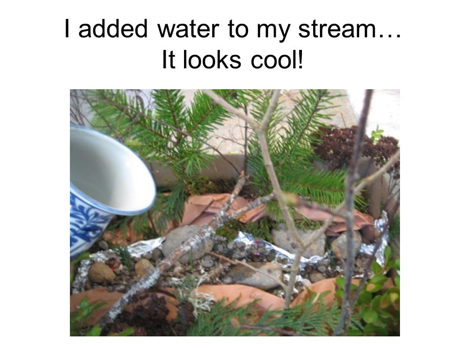 I added water to my stream… It looks cool!