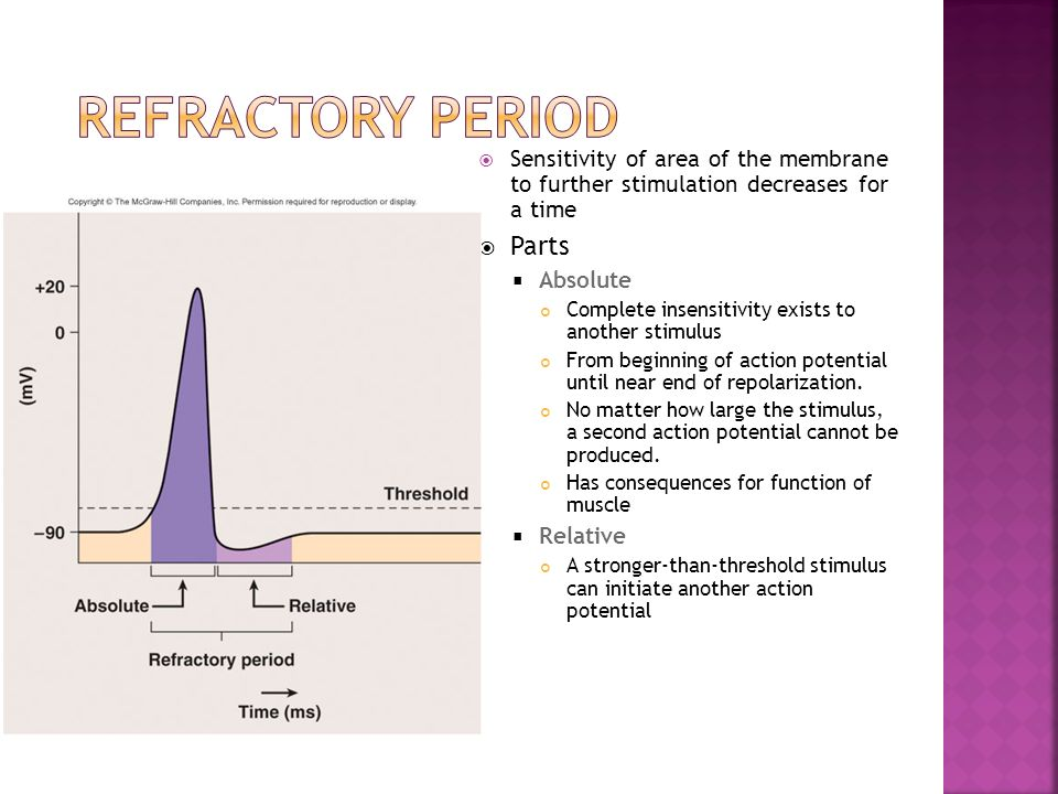 Refractory Period Parts
