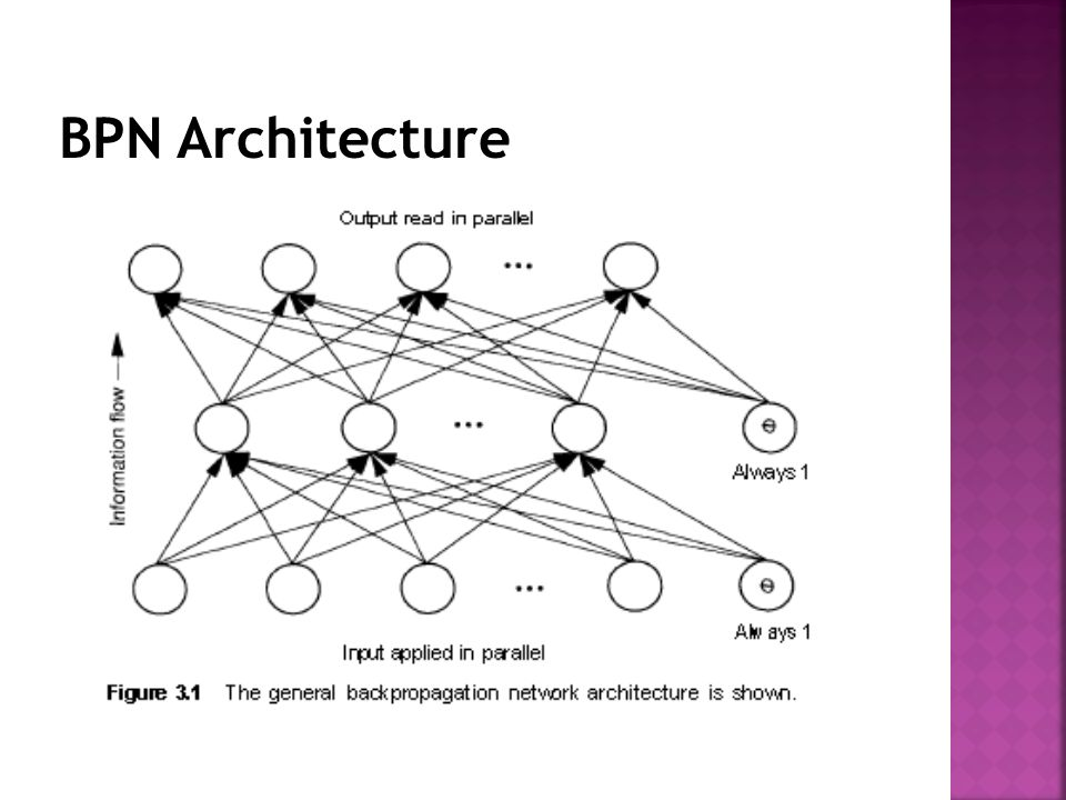 BPN Architecture