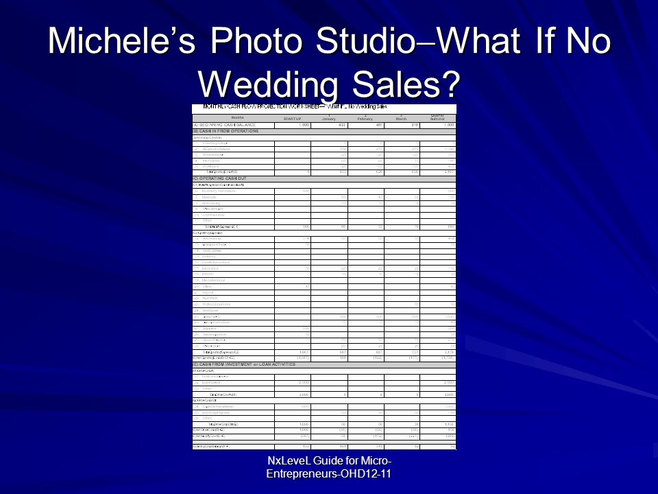 Michele's Photo StudioWhat If No Wedding Sales