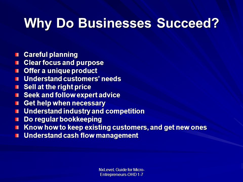 Why Do Businesses Succeed