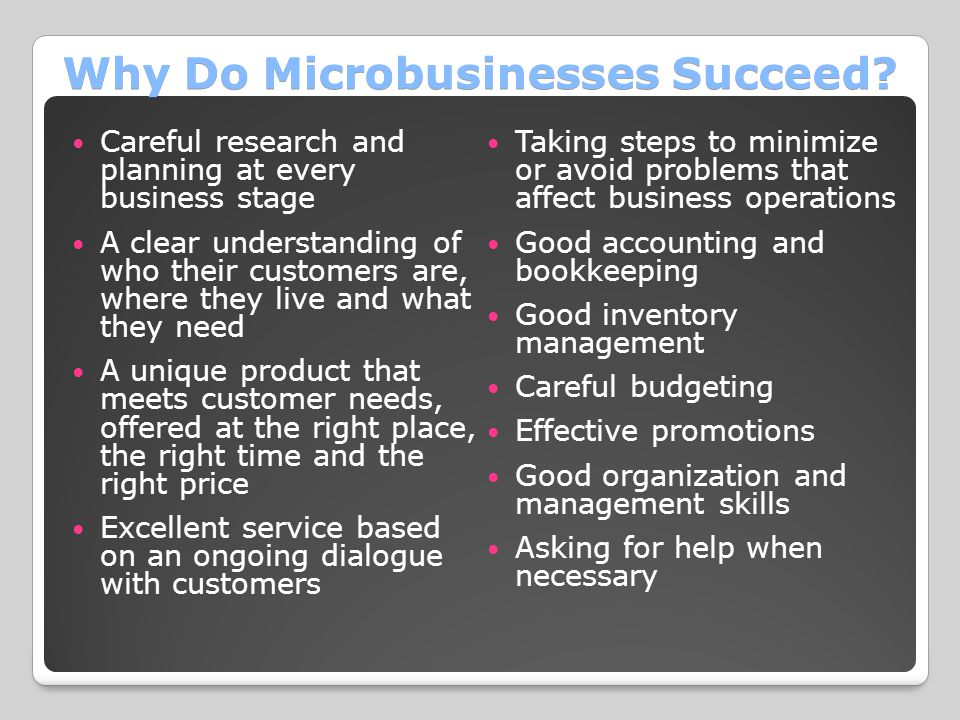 Why Do Microbusinesses Succeed