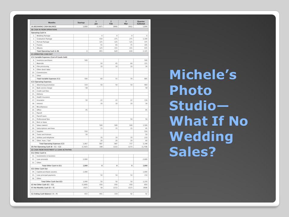 Michele's Photo Studio— What If No Wedding Sales