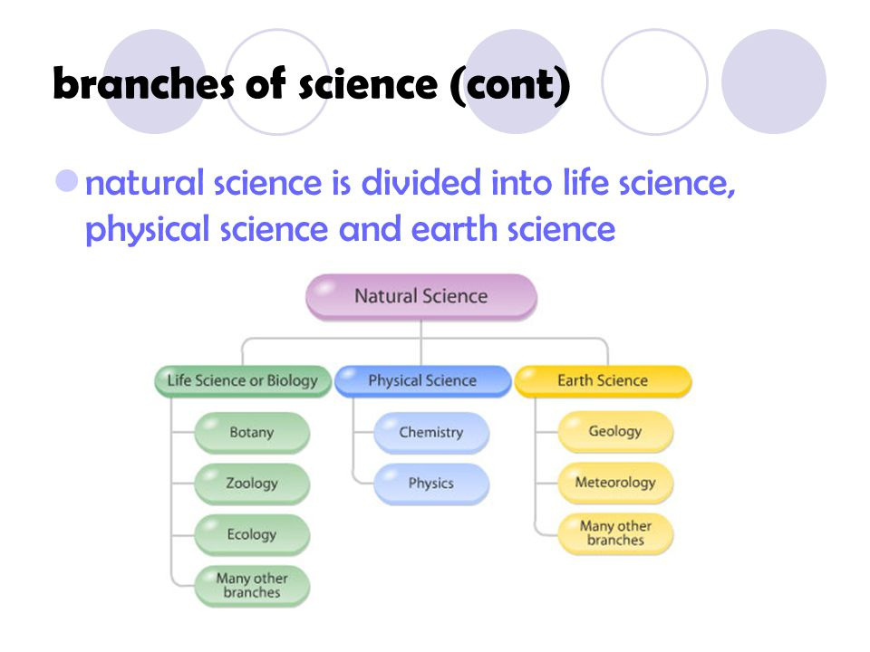 branches of science (cont)