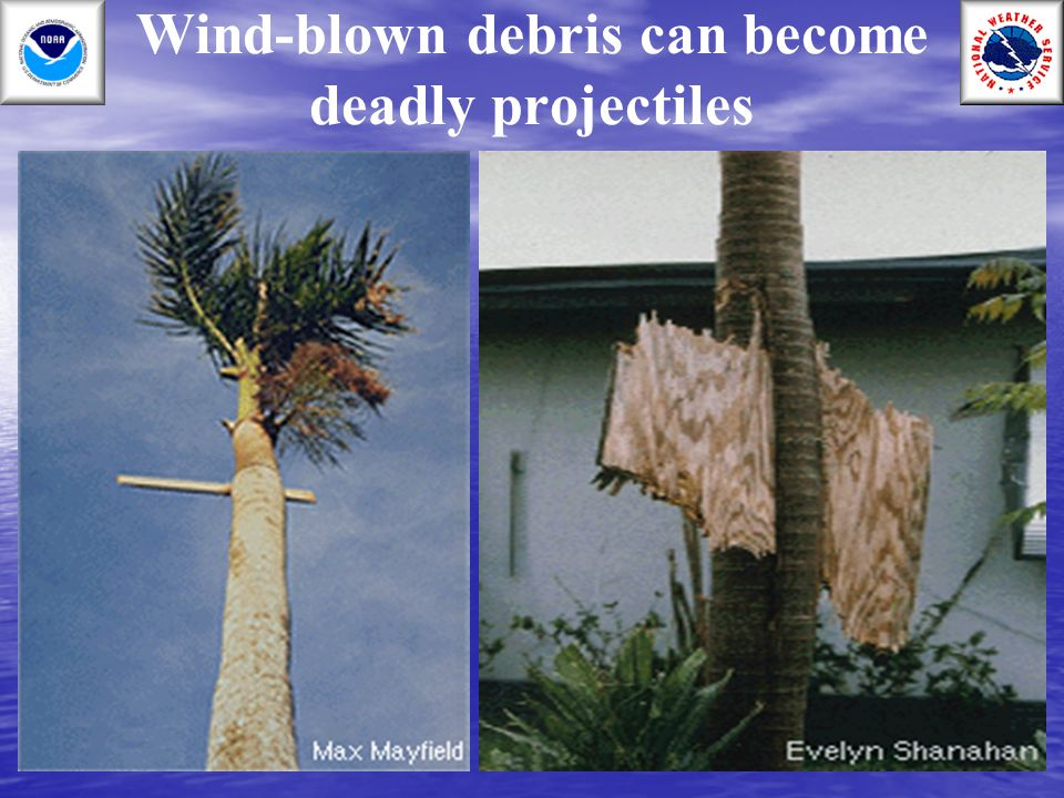 Wind-blown debris can become deadly projectiles
