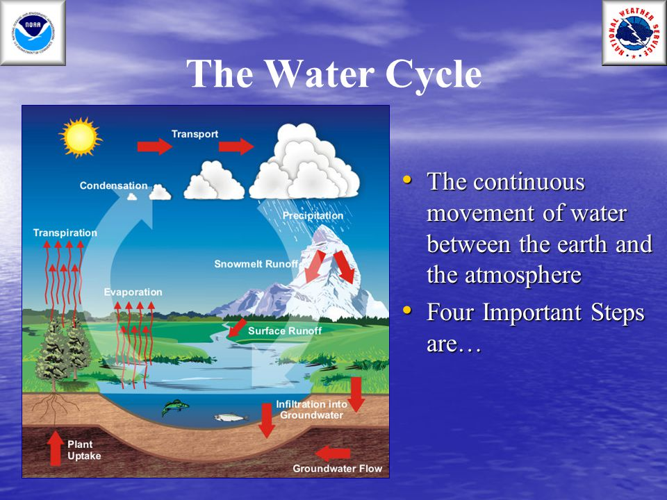The Water Cycle The continuous movement of water between the earth and the atmosphere.