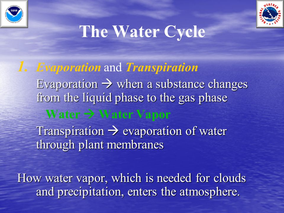 The Water Cycle Evaporation and Transpiration