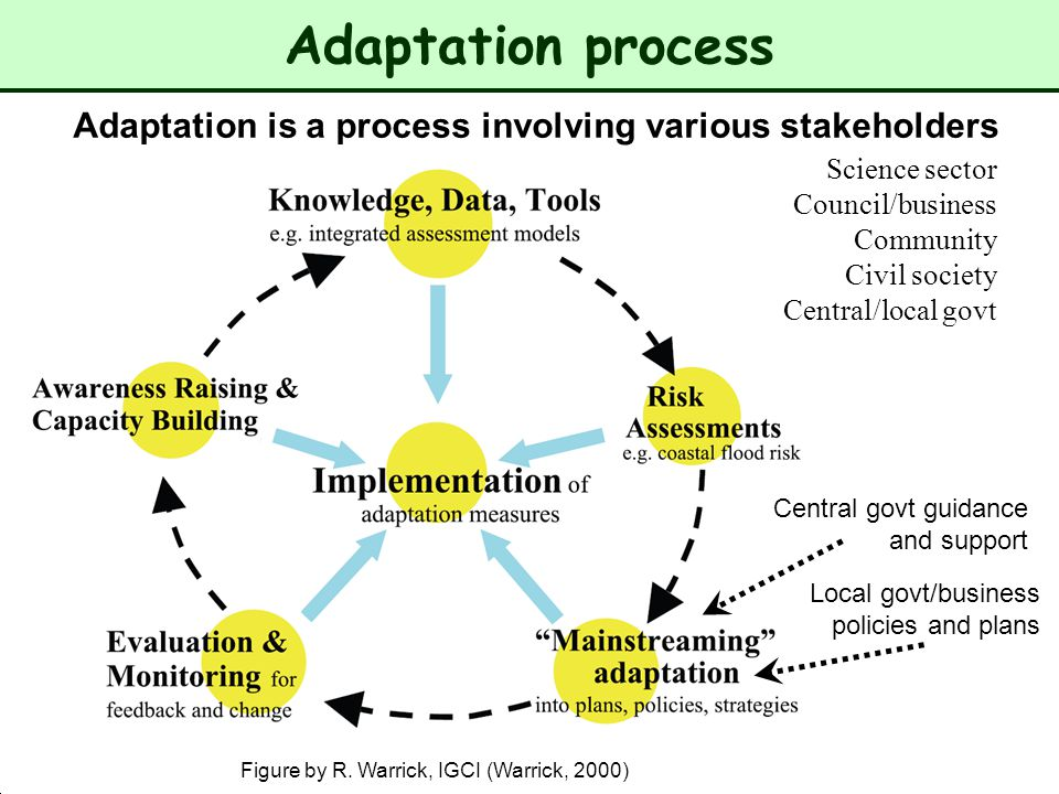 Adaptation process Adaptation is a process involving various stakeholders. Science sector. Council/business.