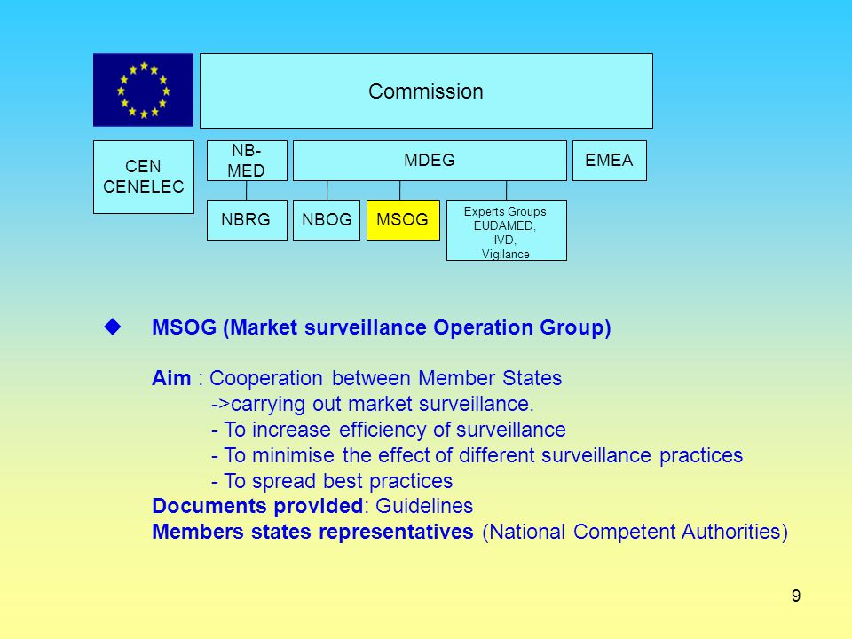 MSOG (Market surveillance Operation Group)