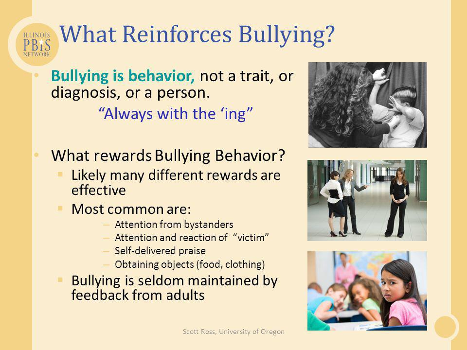 What Reinforces Bullying