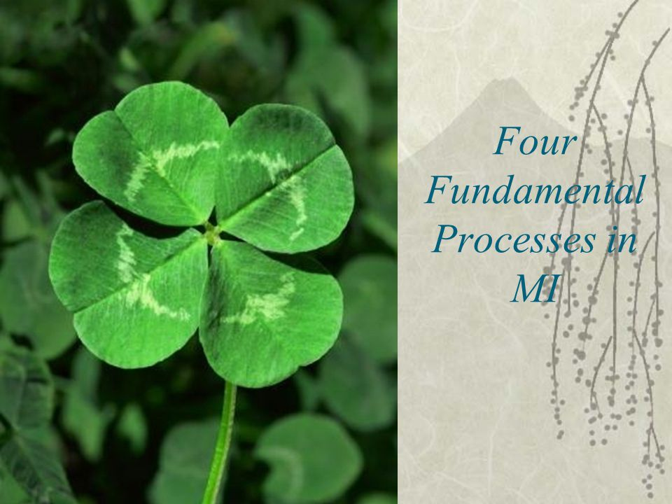 Four Fundamental Processes in MI