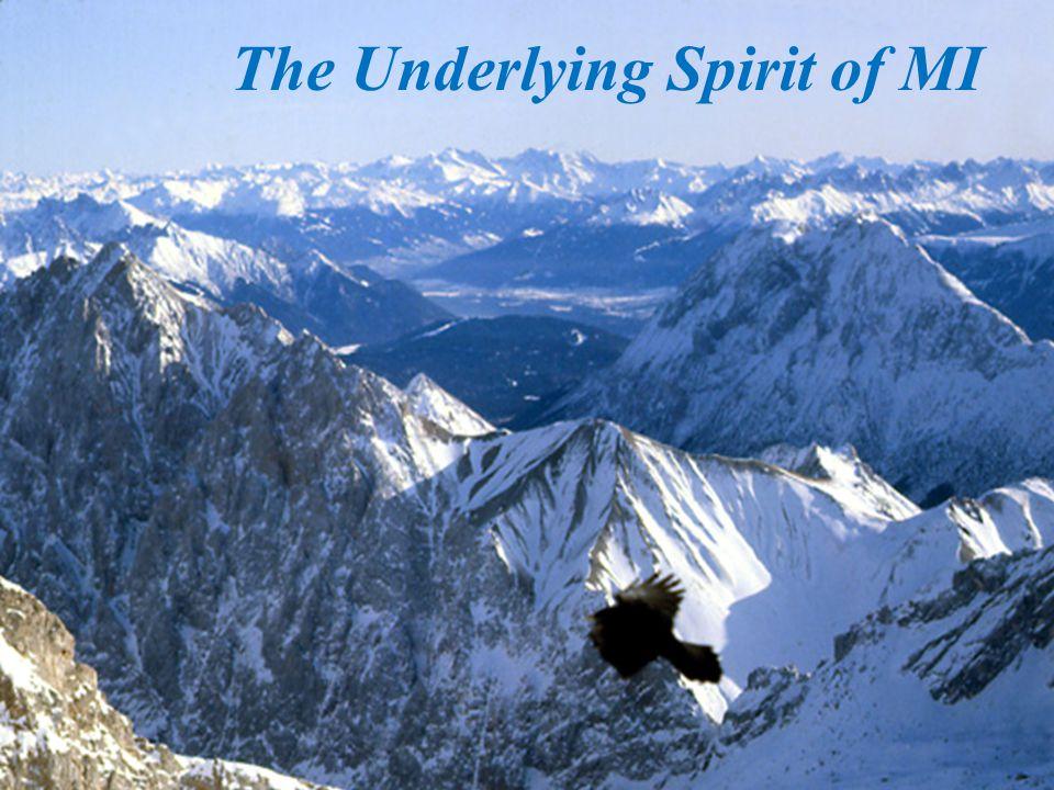 The Underlying Spirit of MI