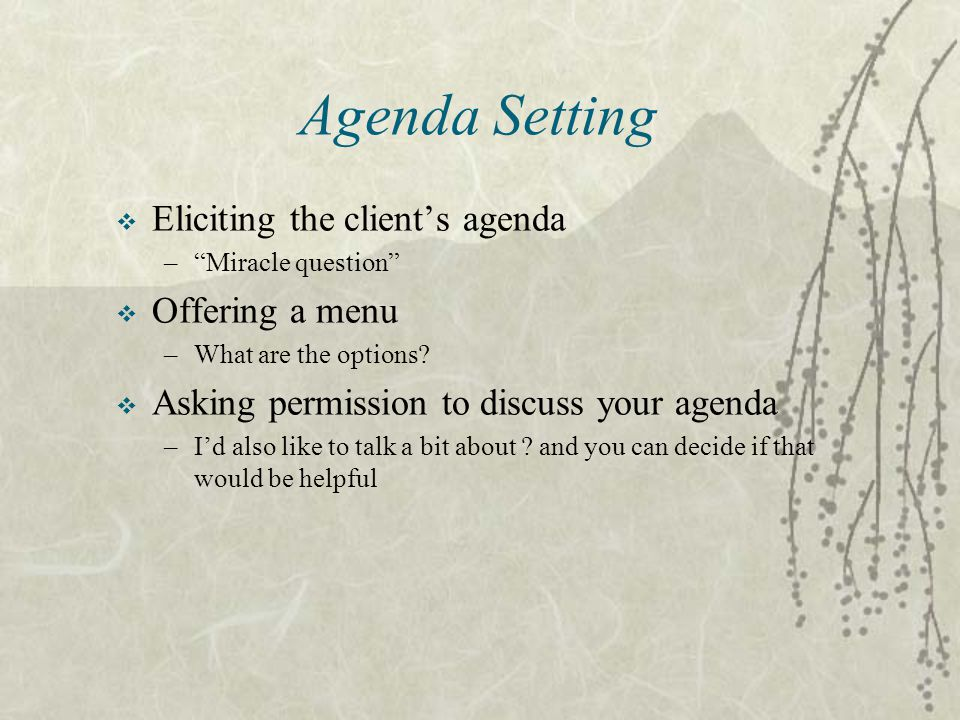 Agenda Setting Eliciting the client's agenda Offering a menu
