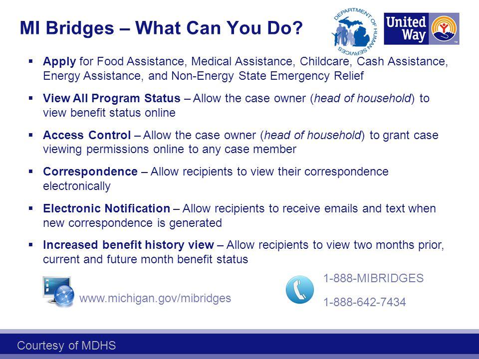 MI Bridges – What Can You Do