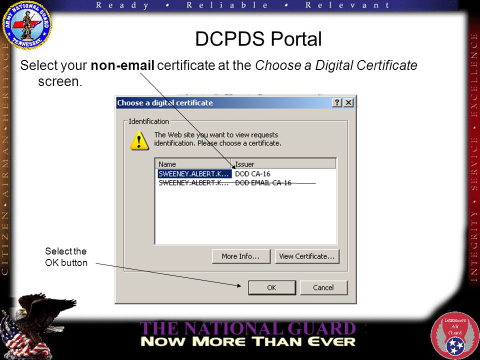DCPDS Portal Enter your PIN and select the OK button.