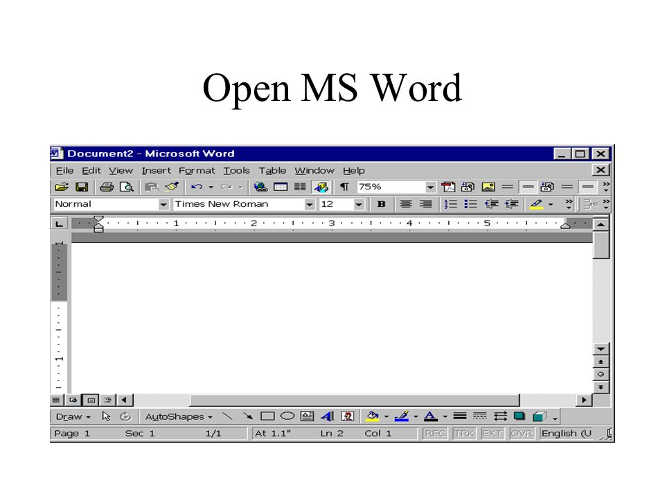 Open MS Word
